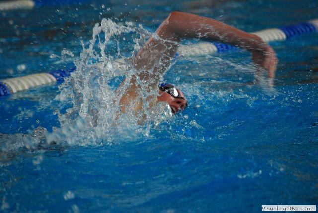 2015 Kraulschwimmer 2